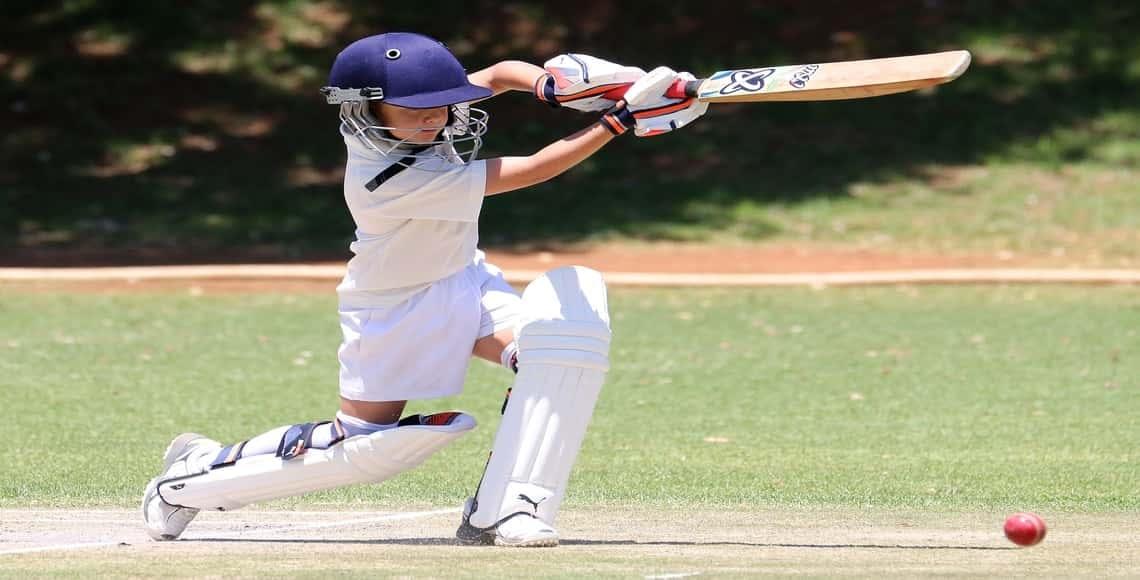 cricket bat in india